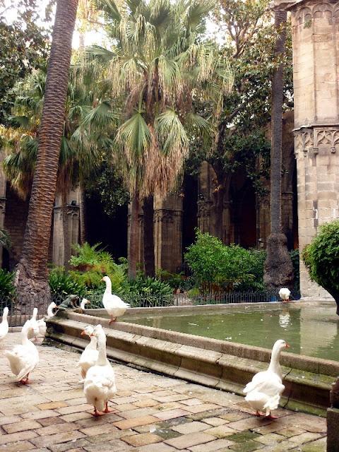 itinerario per il centro di Barcellona, la cattedrale