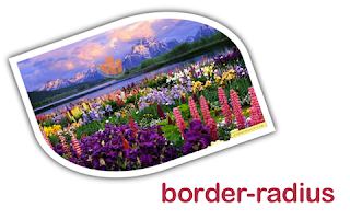 Cara Mudah Membuat Border Gambar Melengkung
