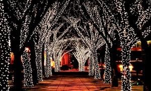 My vegas mommy 2014 08 17 17 meter string of 100 led solar powered fairy lights fandeluxe Images