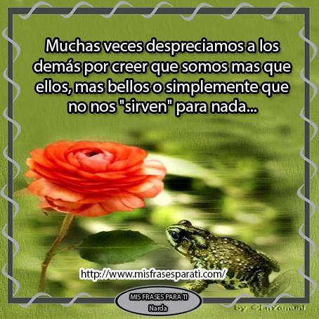 Imagenes De Rosas Marchitas Con Frases - Una rosa marchita Mis Frases