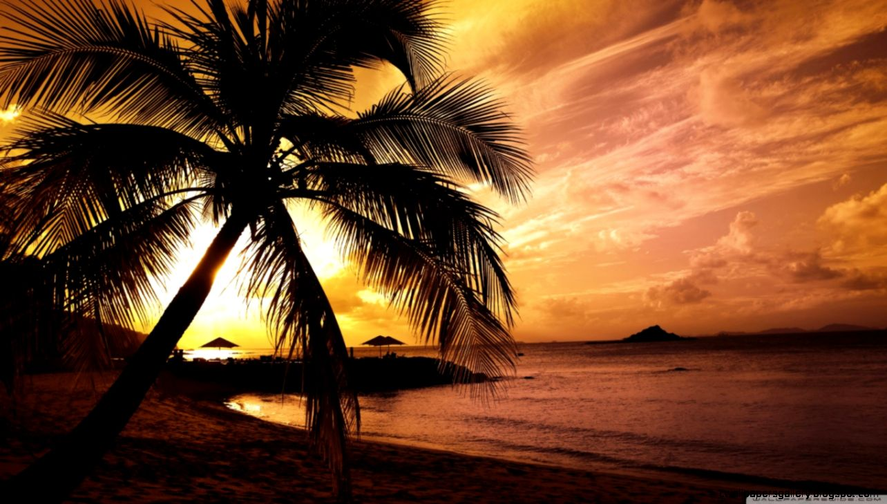 Tropical Beach Sunset HD desktop wallpaper  Widescreen  High