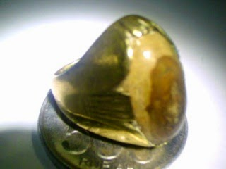 Jual Batu Cincin Sepah Kayu