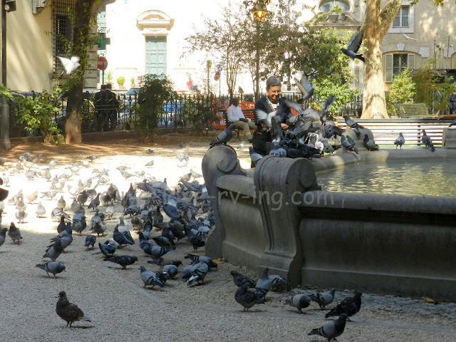 Lady dips the pigeon into the fountain when she grooms them
