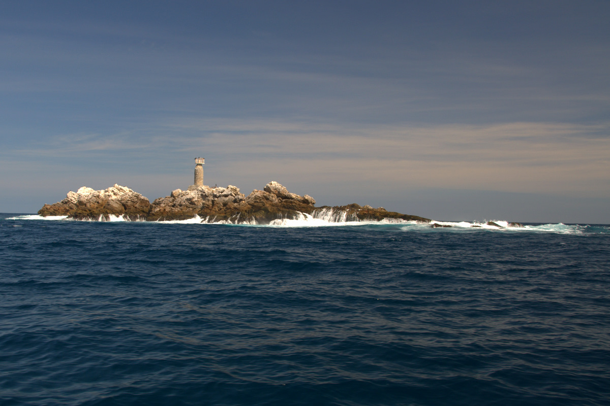 Spearfishing punta mita for Punta mita fishing