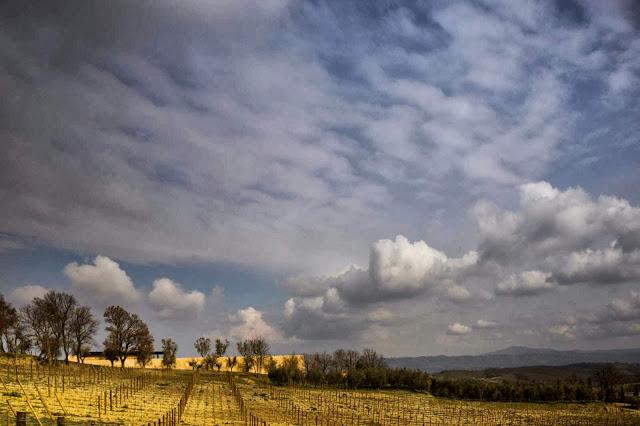 09-Bulgari-Bodega por Alvisi-Kirimoto-Partners