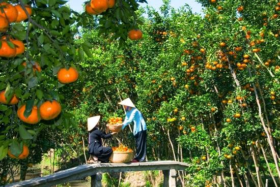Du lịch xuyên Việt 12 ngày2