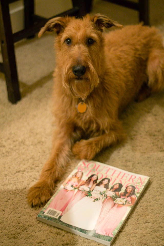 dogs in Southern Wedding magazine