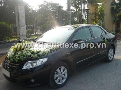 Cho thuê xe cưới Toyota Altis