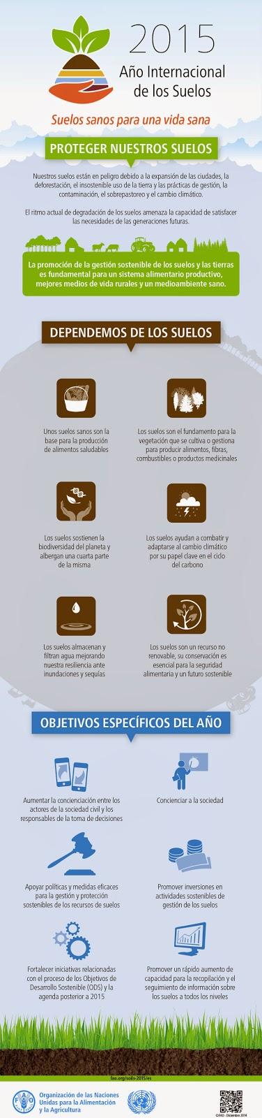 infografia año internacional de los suelos 2015 FAO