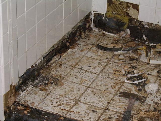 Bathroom Floor Black Mold : Image black mold under bathroom floor download