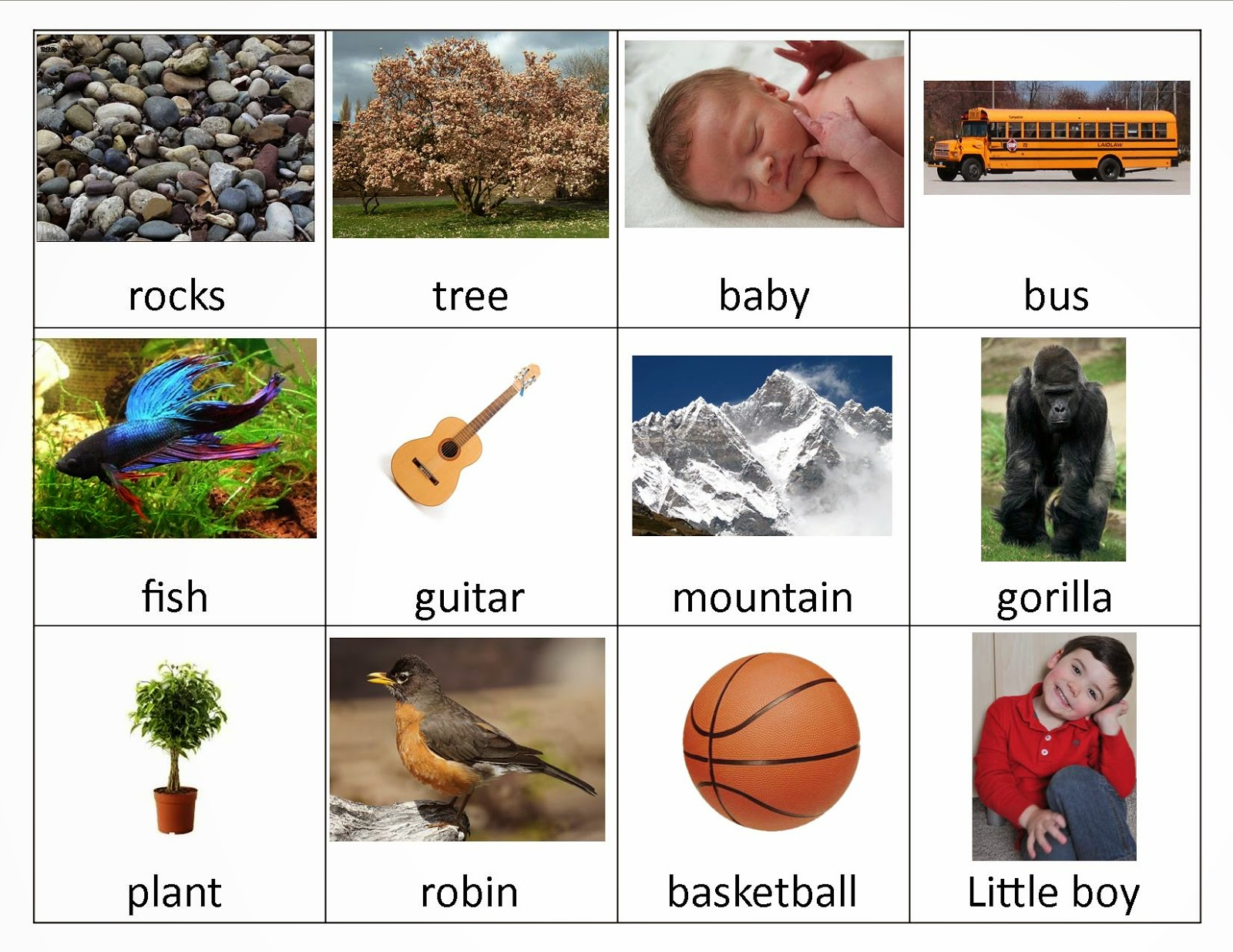 Living and Nonliving cards ( print them here )