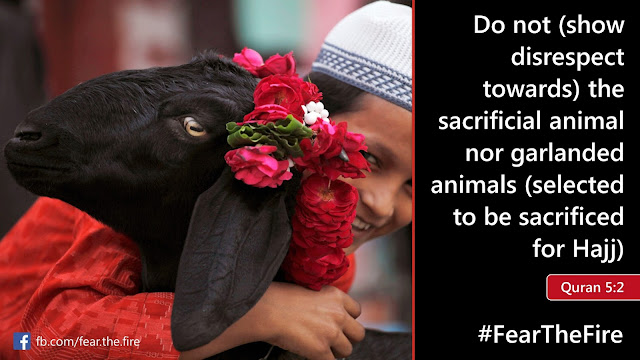 Stop Abuse of Animals Brought for Sacrifice