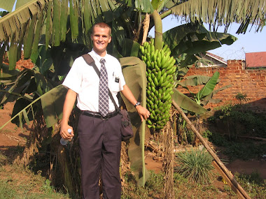 Matt by a banana tree in Lira, Northern Uganda.