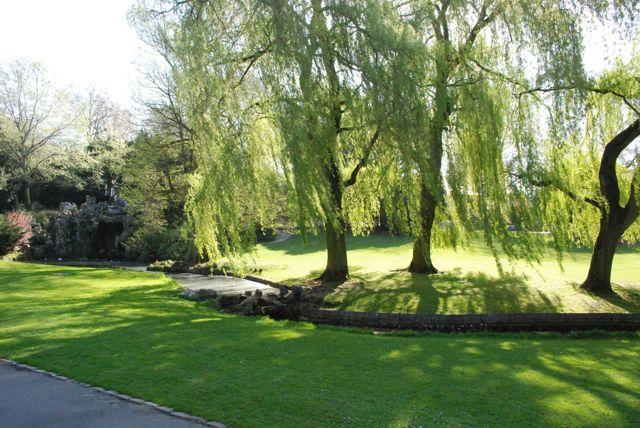 Le Parc Barbieux dit le Beau Jardin: Les arbres du Parc