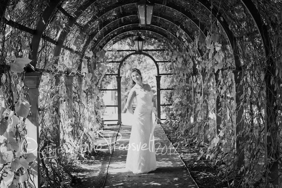 Pruut-kadriorus-pulmafoto