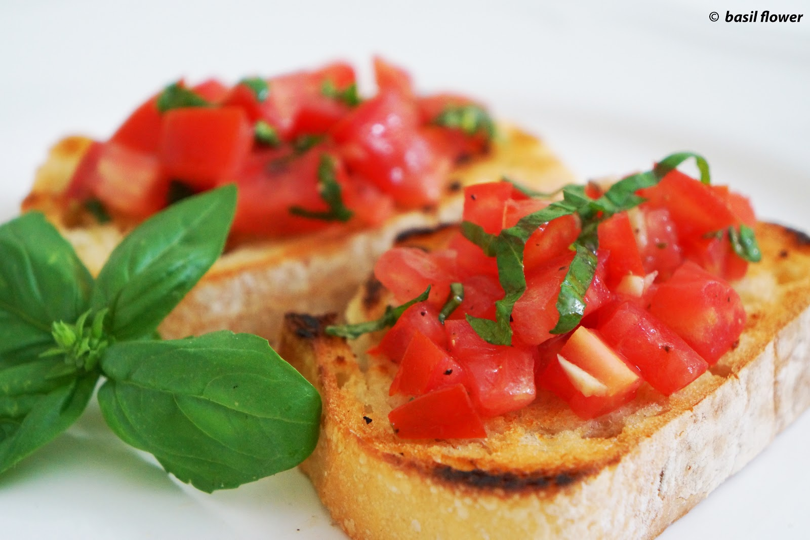 with truffled tomato bruschetta roasted tomato and fresh mozzarella ...