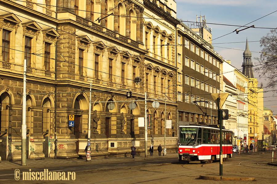 Trams of Prague