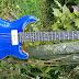 Guitarra PRSHB