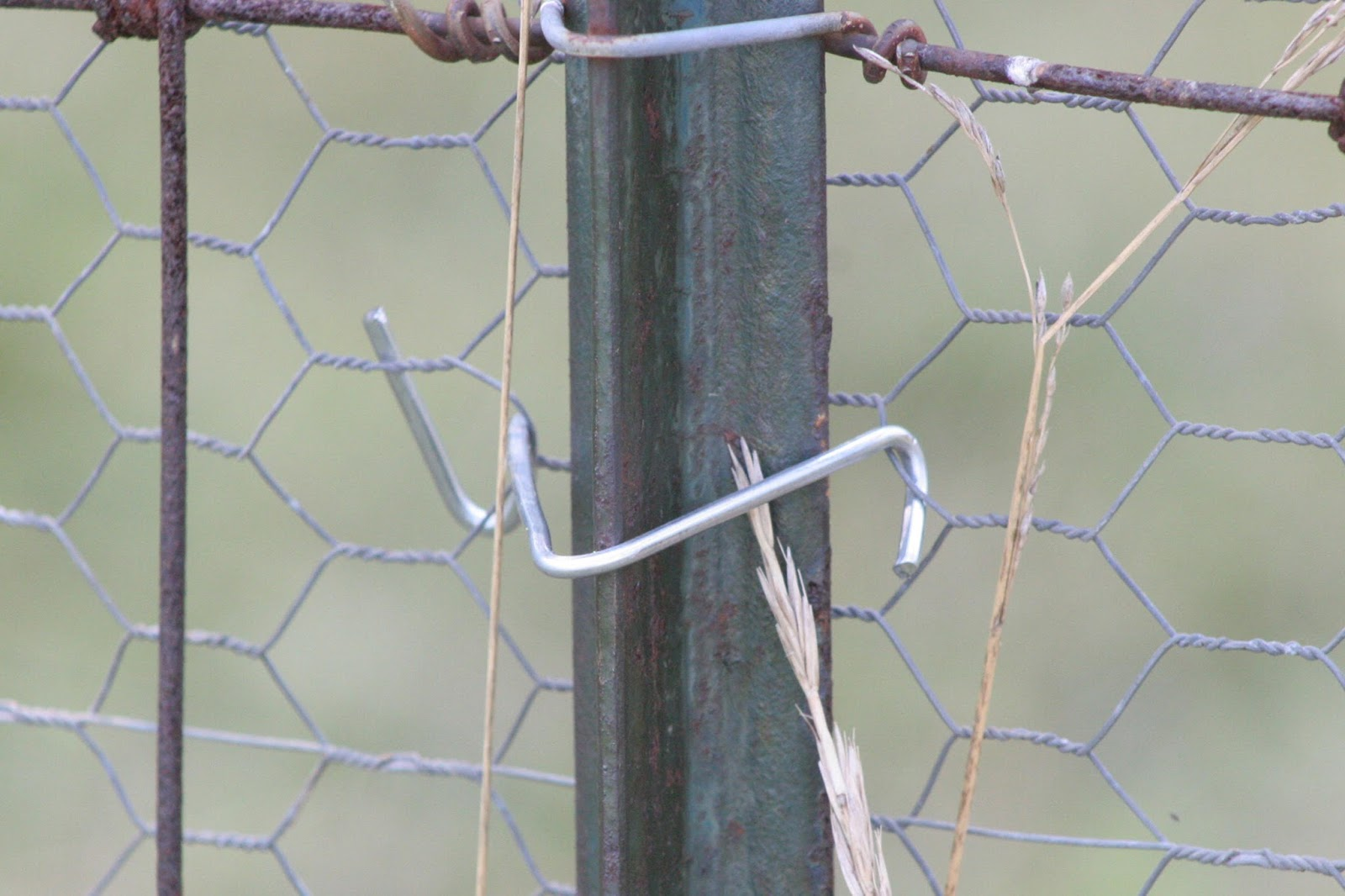 Fence Wire Hook - WIRE Center •