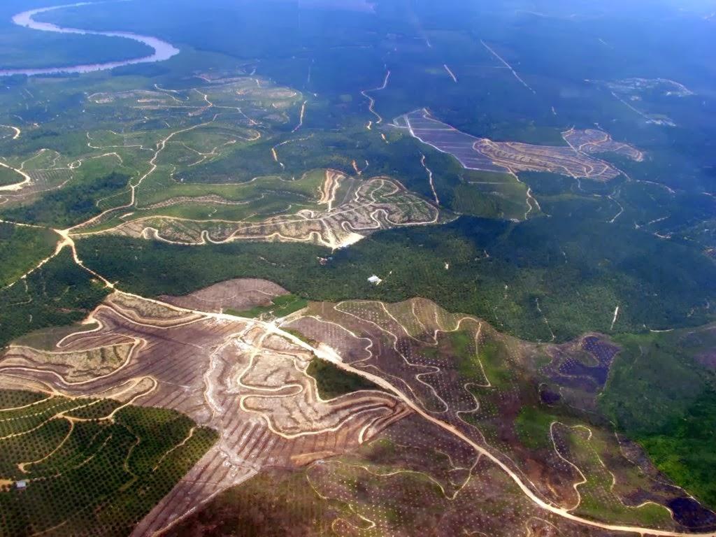Hasil gambar untuk Perubahan Iklim dan Penggundulan Hutan Penyebab Tanah Longsor di Jawa