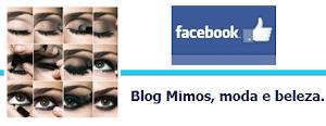 Curta a página do Blog no Facebook