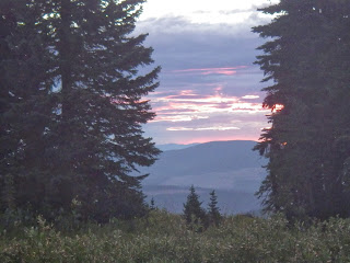 2013 FatDog Race Report - Sunrise on Heather Trail