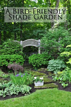 Feature Garden Post: