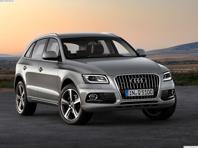Side image of Audi Q9