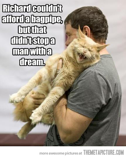 funny-cat-bagpipe-playing-man.jpg