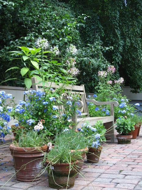 dovecote decor container garden