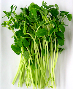 Microgreens are here!