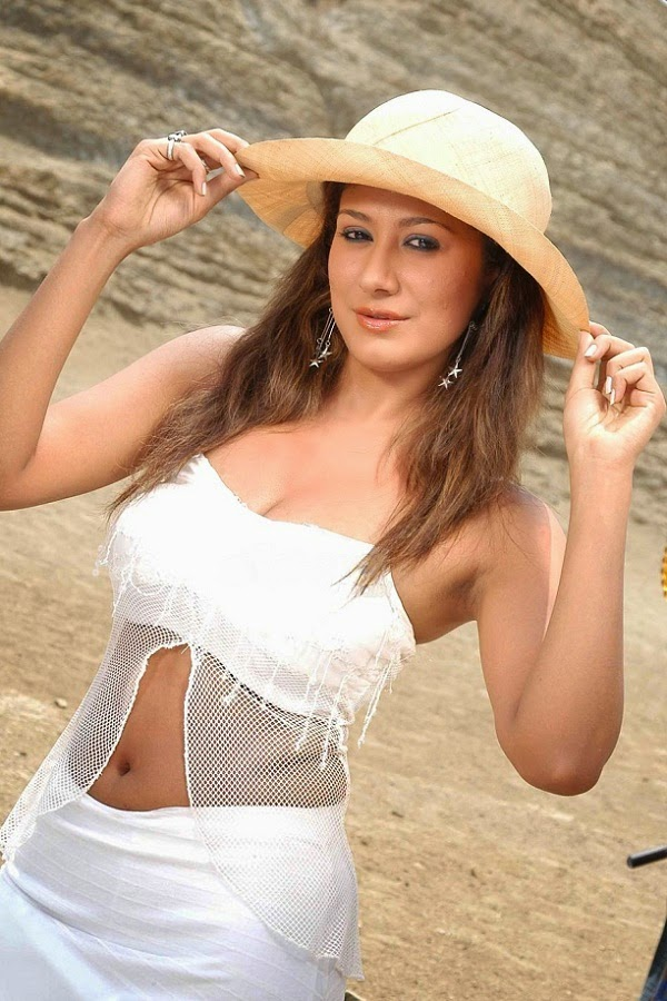 Anjali Pandey navel