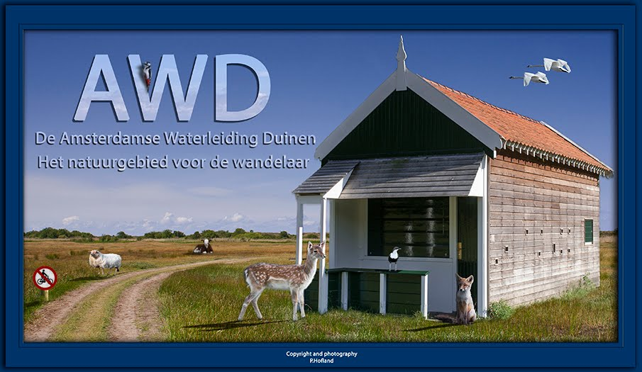 Amsterdamse Waterleiding Duinen (AWD)
