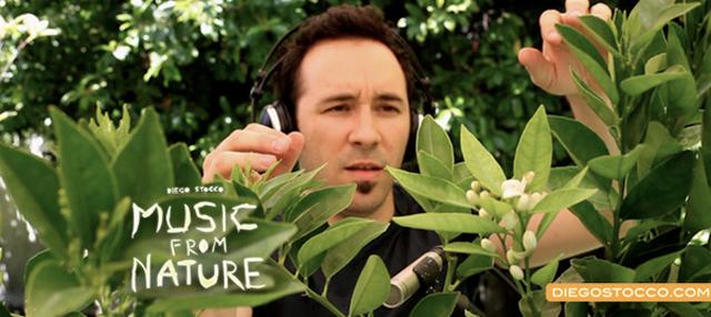 Música criada com elementos da natureza