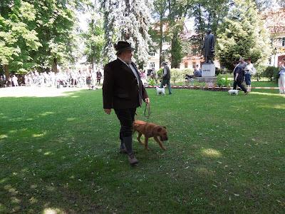 Lovecký pes a jeho pán