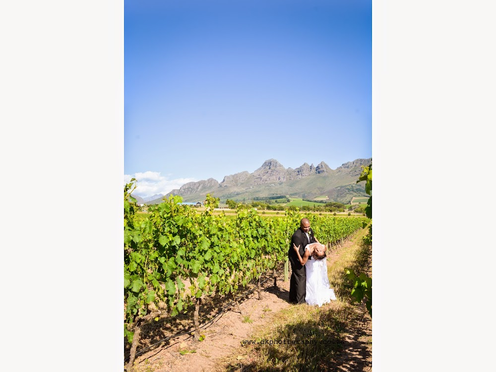 DK Photography Slideshow-306 Lawrencia & Warren's Wedding in Forest 44, Stellenbosch  Cape Town Wedding photographer