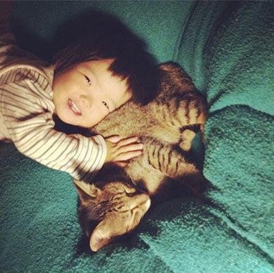 Agar si kucing rukun dengan balita anda
