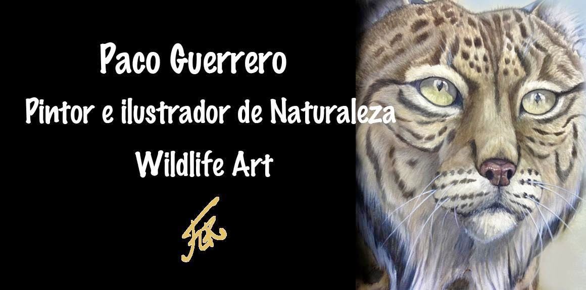 Paco Guerrero Wildlife Art