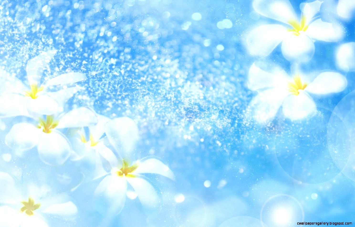 Light Blue Flowers Background