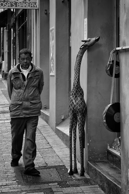 A man walks past a giraffe in this example of South African street photography
