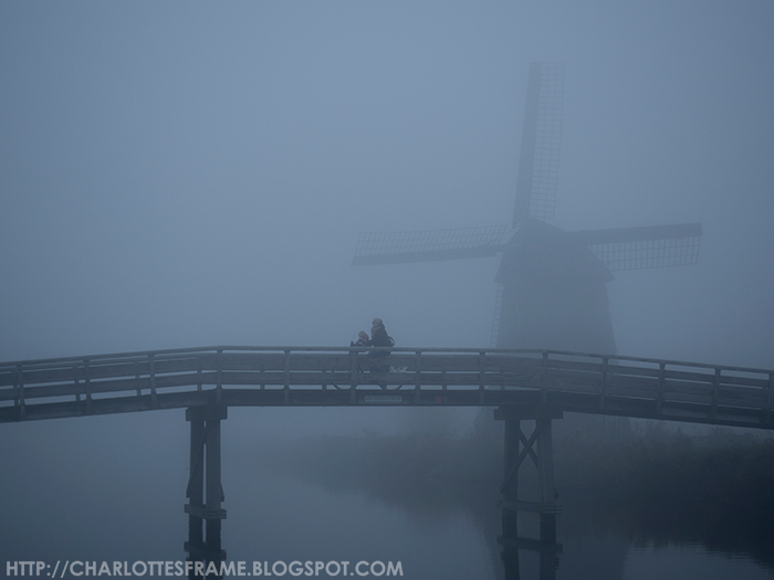 fog windmil bridge, fog in the netherlands, windmills in the fog,