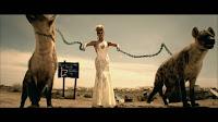 Beyonce hyena