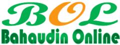 Bahaudin Online ~ Halaman Pribadi Seorang Blogger Pemula