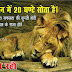 Funny Hindi Whatsapp Status Pictures