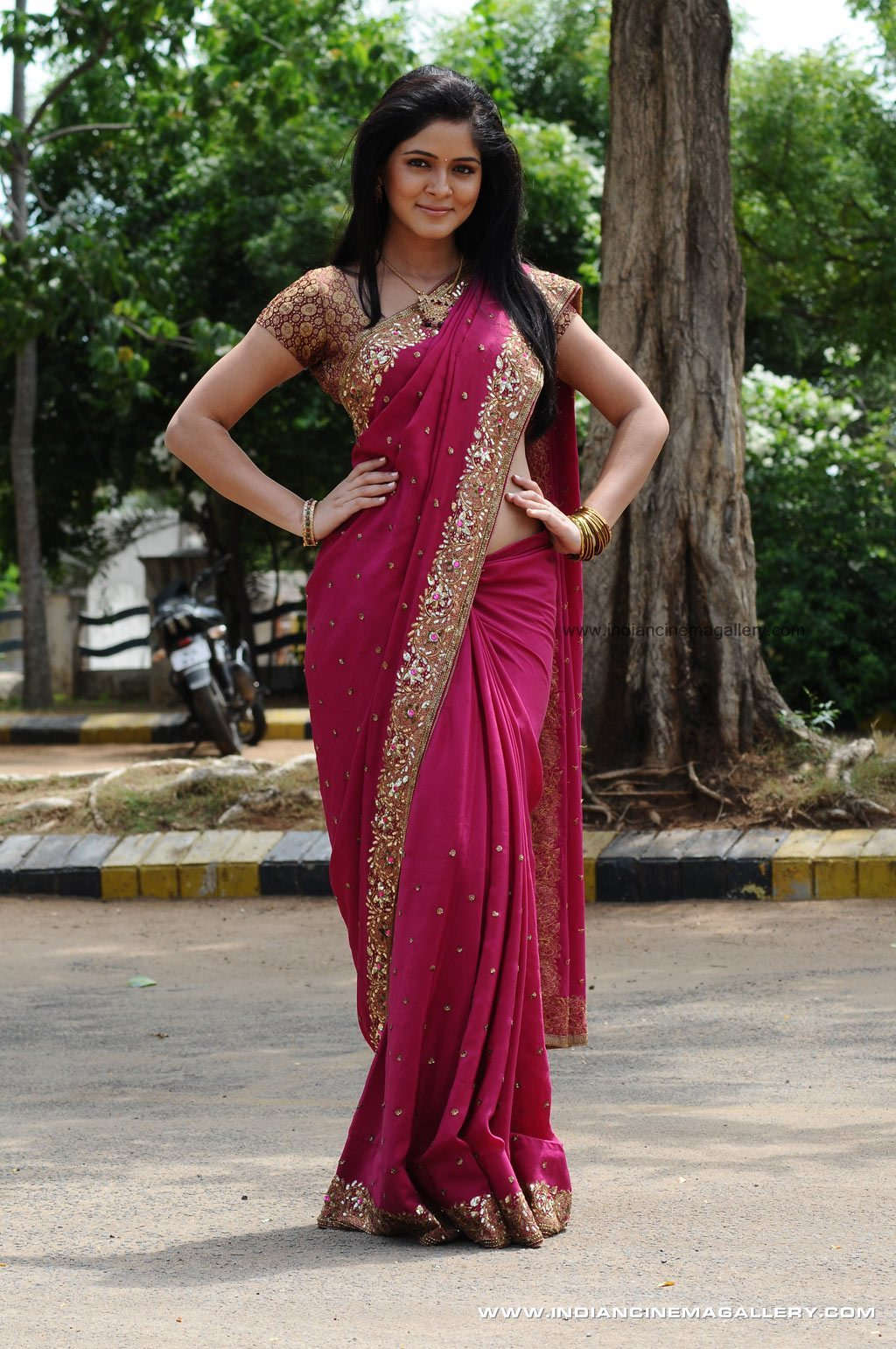 Parvathi   - South Actress Parvathi  Saree Pics