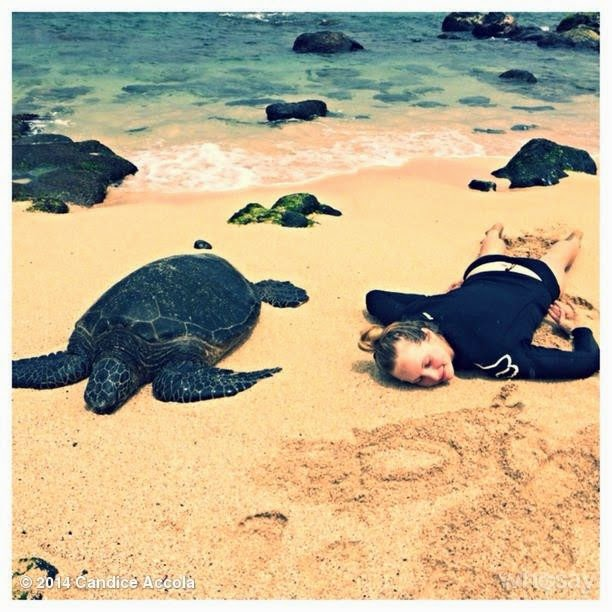 Candice Accola shares her stunning pictures in Instagram account during a vacation in Hawaii on Tuesday, April 15, 2014