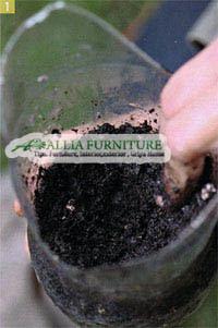 Memotong botol bekas untuk green wall sederhana
