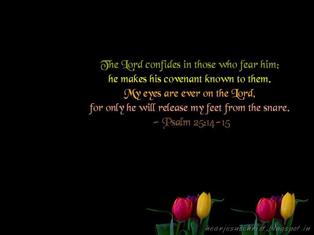 http://3.bp.blogspot.com/-Tukm4AoZ1HM/UIA5CNfCtDI/AAAAAAAAB0E/qdfqpWQEgcM/s1600/psalms25-14,15.jpg