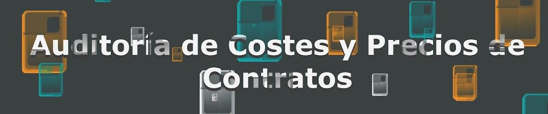 Auditoría de costes y precios de contratos públicos. Auditoría de contratos.