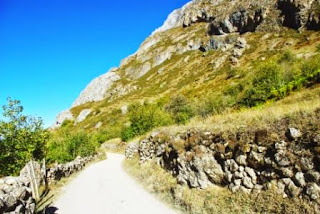 Primeros tramos del sendero que conduce al lago